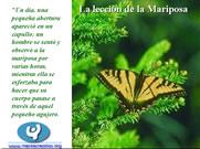La Lección de las Mariposas